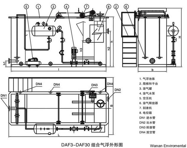 DAF-4.png