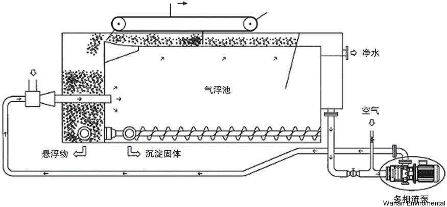 CAF-4.jpg